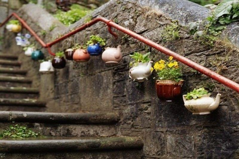 Teapot flowers