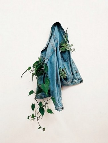 Jean-jacket-planter