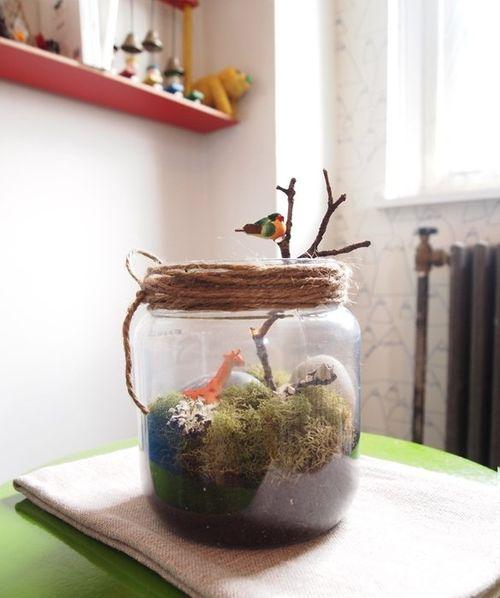 Amanda-kingloff-easy-terrarium